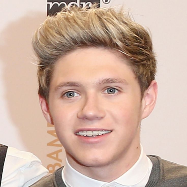 Learn more about Niall Horan, one of the members of the boy band One Direction, at Biography.com.