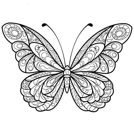 20 Mandalas de mariposas y flores