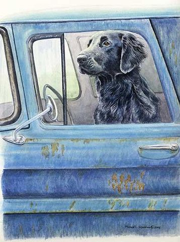 """Wait Here"" A Limited Edition Flat Coated Retriever Print - Michael Steddum"