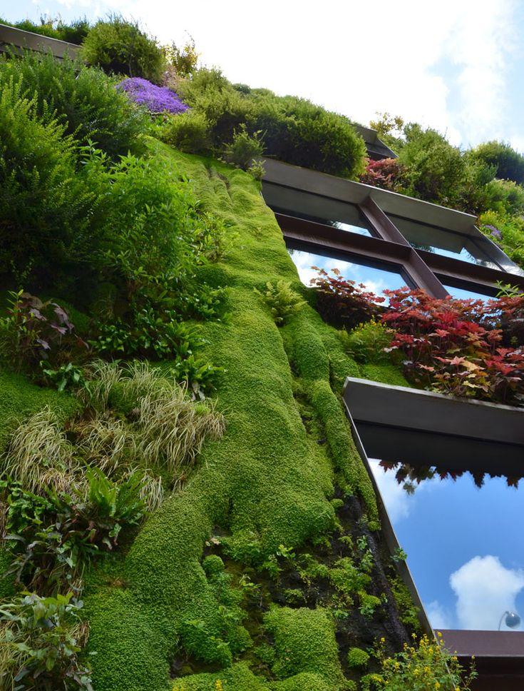17 mejores im genes sobre muros verdes en pinterest for Jardines verdes verticales