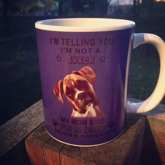 "29 best Boxer ""Mugs"" images on Pinterest"