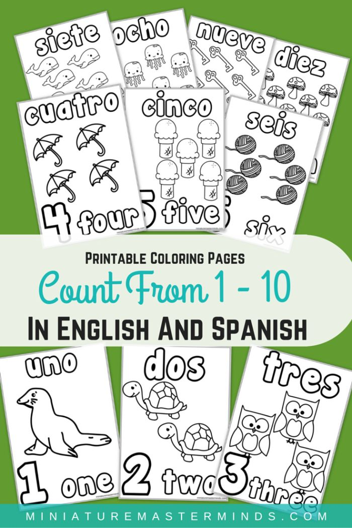 Printable Coloring Pages Counting 1-10 in English and Spanish Practice counting from 1 to 10 with these coloring pages that include the word in English and in Spanish.  We are working more on count…