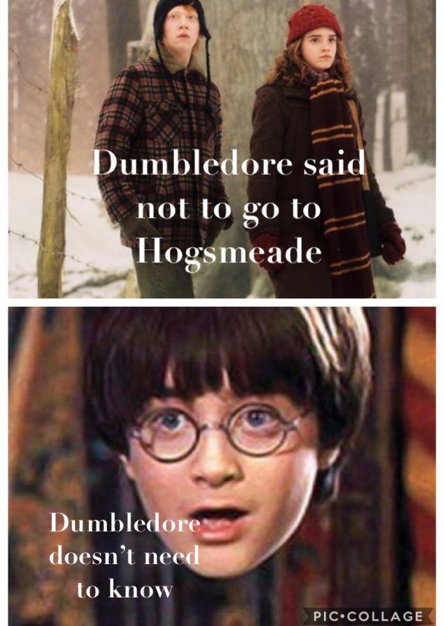 Harry Potter Hamilton Mashup Harry Potter Feels Harry Potter Pictures Disney Hogwarts