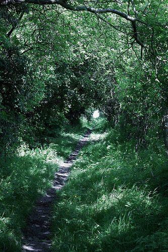 Adventure Walk of Letcombe Regis