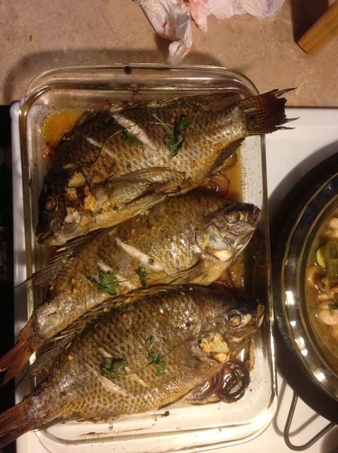 How to bake whole tilapia and shrimp recipe shrimp for How to cook tilapia fish