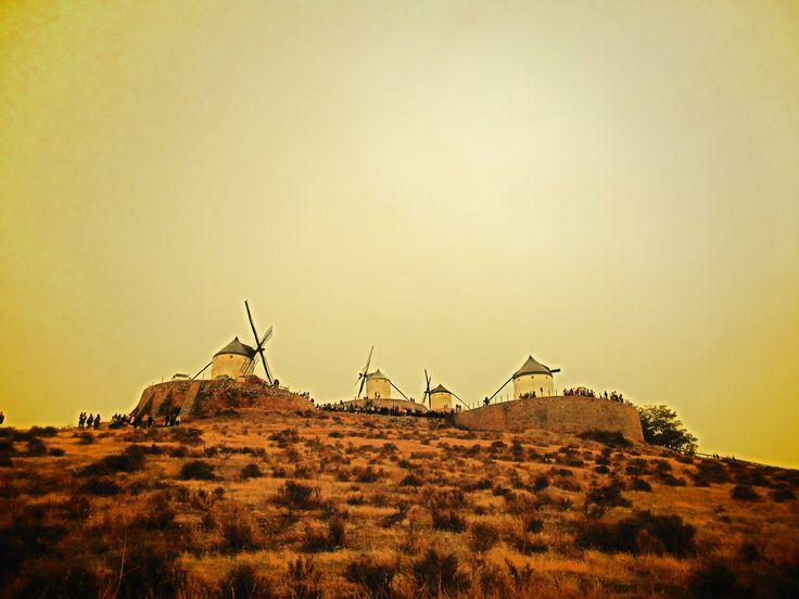Mambrino, Bolero, Mochilas y Sancho.