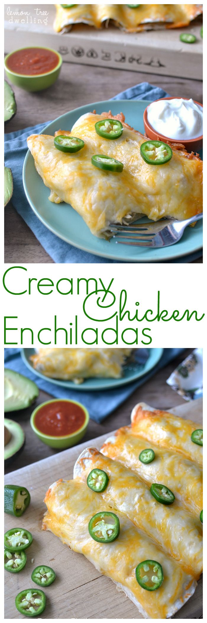 The BEST Creamy Chicken Enchiladas! #enchiladas #foodporn #dan330 http://livedan330.com/2015/02/01/creamy-chicken-enchiladas/