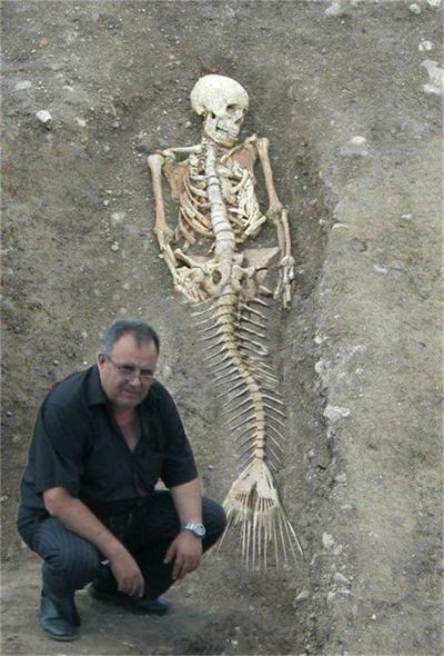 "Mermaid Body Found In Washington | Mermaids: The Body Found"" Continues to Puzzle if Mermaids Do ..."