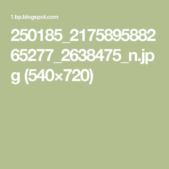 250185_217589588265277_2638475_n.jpg (540×720)