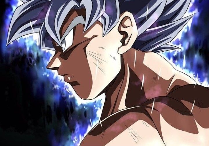 Goku Ultra Instinct Mastered Dragon Ball Super Goku Dragon Ball Dragon Ball Wallpapers