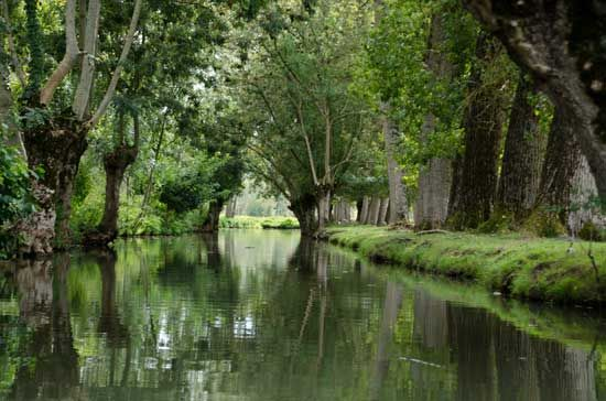 Camping la Venise Verte: a French 4 star campsite in the heart of the Marais Poitevin