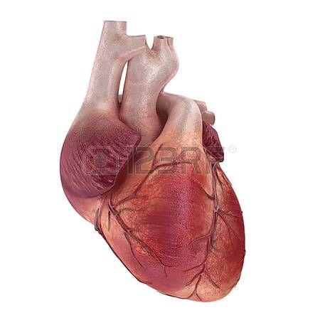 Super Oltre 25 fantastiche idee su Illustrazione del cuore su Pinterest  YF24