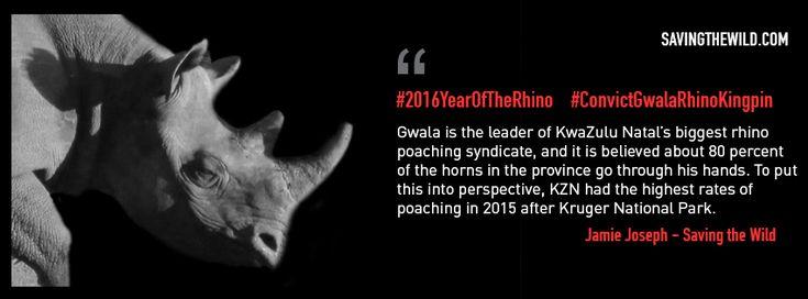 #ConvictGwalaRhinoKingpin - behind the scenes