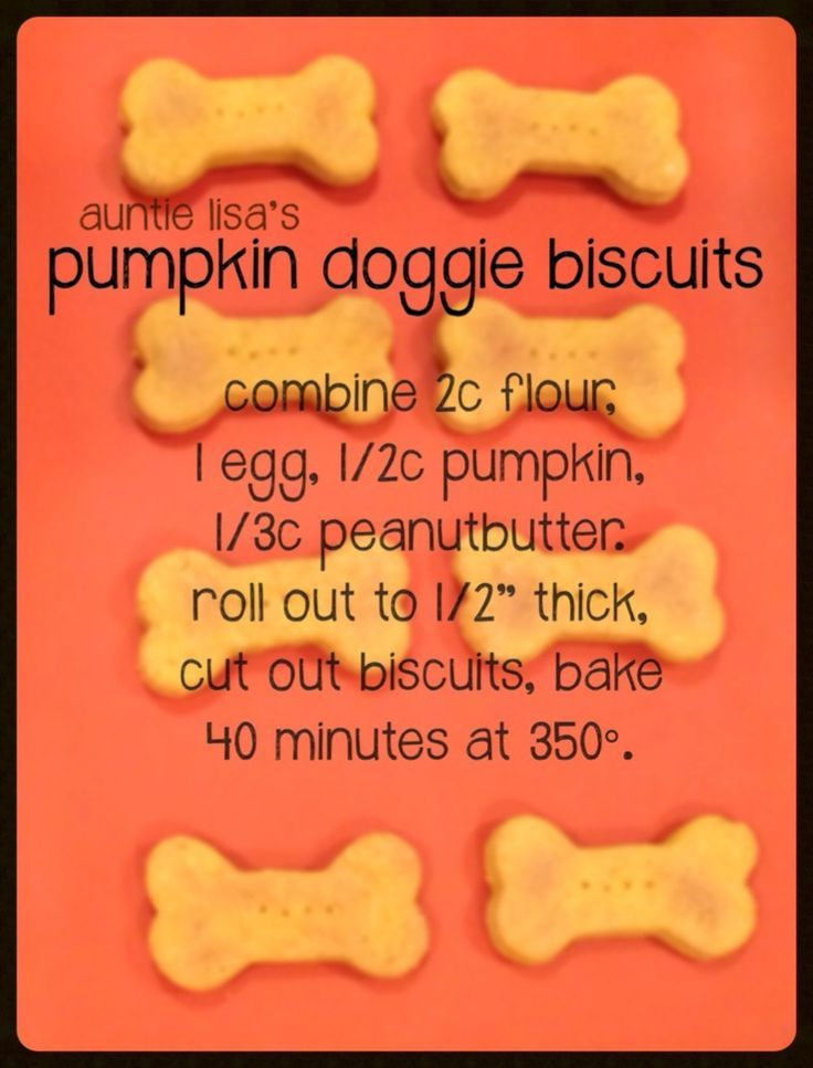 Most dogs love pumpkin. These treats are easy to make right in your own kitchen! Too many at once can cause constipation. Pumpkin is a natural source for combatting diahrrea.