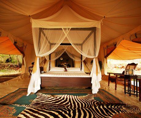 5 reasons a luxury safari honeymoon is just better - - Luxury safari camp