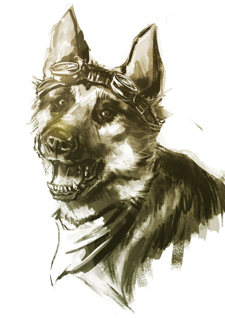 Fallout 4 | Dogmeat. Imagine him turned loose in a couple of worlds, dragging odds and ends onto the Tardis while the Doctor's not looking...