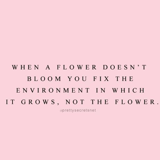 """When a flower doesn't bloom you fix the environment in which it grows, not the flower."" Love yourself enough to walk away from environments/situations that don't make you feel good!"