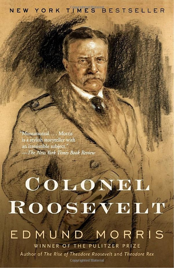 "Chronicles Roosevelt after leaving offic...from the description - ""Of all our great presidents, Theodore Roosevelt is the only one whose greatness increased out of office. What other president has written forty books, hunted lions, founded a third political party, survived an assassin's bullet, and explored an unknown river longer than the Rhine?"""