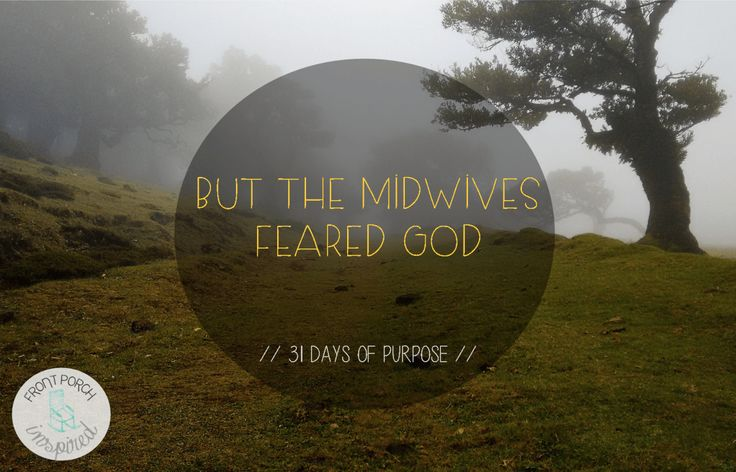but the midwives feared God // Exodus 1:17  And so, it was not the famous, popular, or the powerful who divinely prepared the room for a certain baby named Moses; it was the midwives, with hearts who feared God.  These nameless women were perfectly situated to receive what God was about to birth.