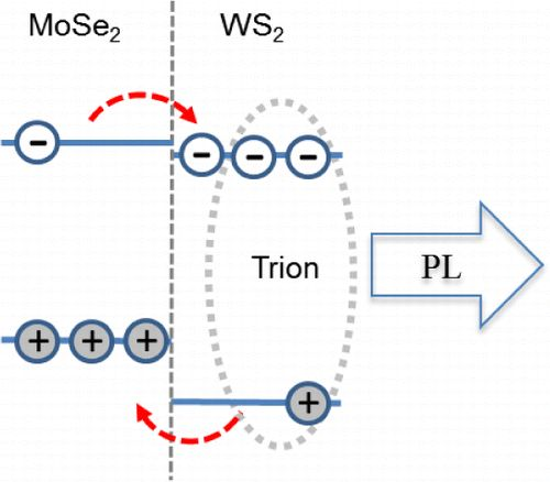 Tightly Bound #Trions in Transition Metal #Dichalcogenide #Heterostructures by Matthew Z. Bellus , Frank Ceballos , Hsin-Ying Chiu *, and Hui Zhao * Department of Physics and Astronomy, The University of Kansas, Lawrence, Kansas 66045, United States ACS Nano, Article ASAP DOI: 10.1021/acsnano.5b02144 Publication Date (Web): June 5, 2015 Copyright © 2015 American Chemical Society