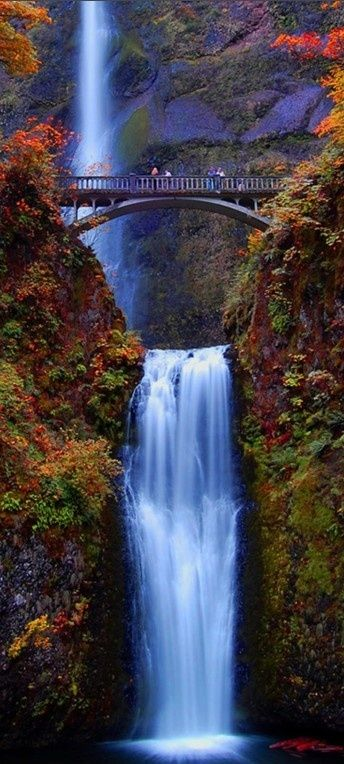Multnomah Falls in the Columbia River Gorge near Portland, Oregon - what a beautiful place! I need to go back.