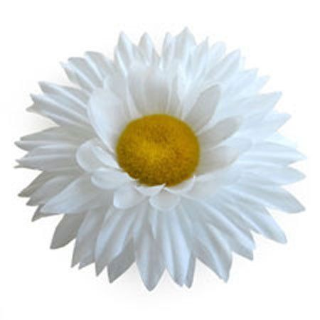 Sara Monica Flower Hair Clip and Pin Daisy_White by Sara Monica LLC. $7.99. Dual Hair and Pin Clip Backing. Large Variety of Colors and Styles. Fabric Flowers. Approximately 4 inches in diameter. Color and Styles for all Occasions. Sara Monica Fashion Accessories Fabric Flower Hair Alligator Clip and Pin.