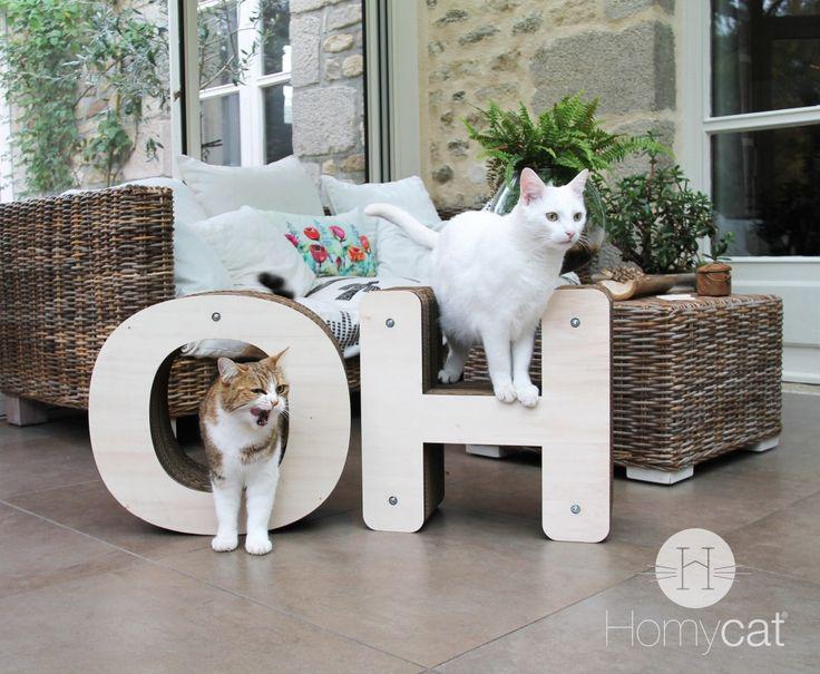 des griffoirs design pour nos chats d'amour ! Homycat