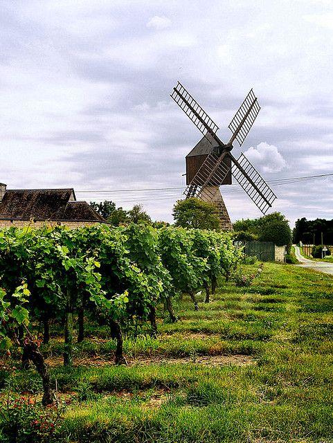 Ancient Windmill, (ca 1514) - Maine-et-Loire, Pays de la Loire, France