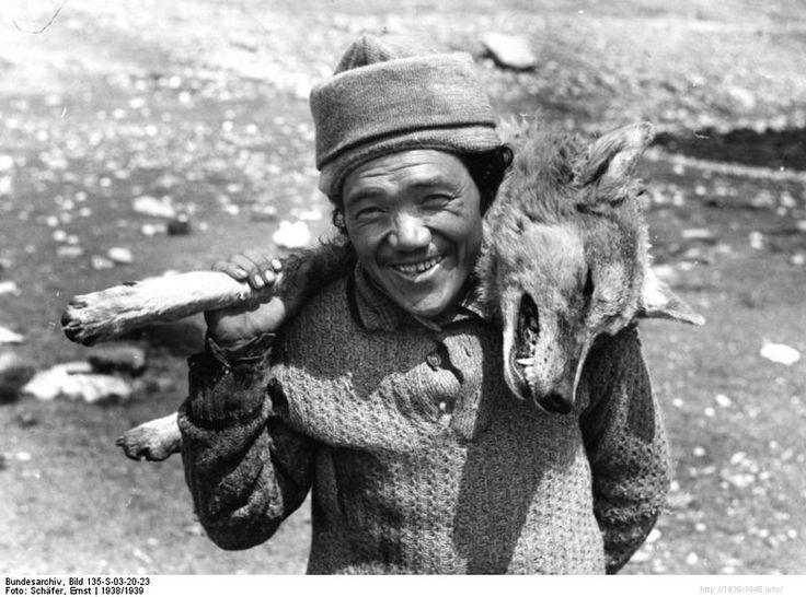 File:Bundesarchiv Bild 135-S-03-20-23, Tibetexpedition, Erlegter Wolf mit Pansi.jpg Title Tibetexpedition, Erlegter Wolf mit Pansi Original caption Gyaukang, tibetischer Wolf mit Pansi Archive description Tibeter Depicted place Tibetexpedition