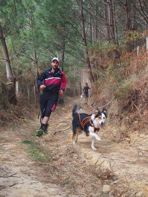 Deporte entre bosques