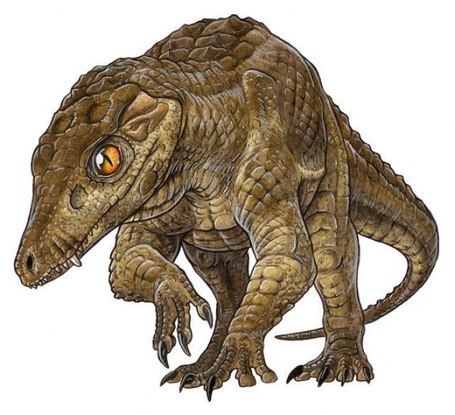 17 Best images about Prehistoric crocodilians on Pinterest ...