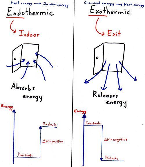 Exothermic/Endothermic