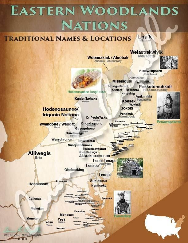 Eastern Woodlands Nations Map United States MapWoodlandSearchingRegional