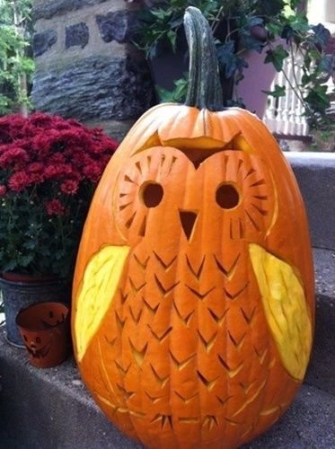 Cute Owl Pumpkin, image only. So very adorable, I'm hoping my hubby @Eric Mattson  can re-create it for Halloween this year.