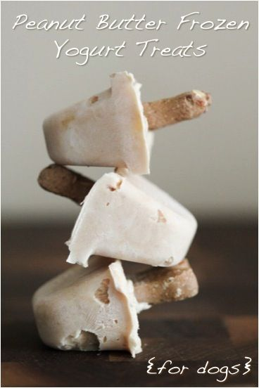 peanut butter frozen yogurt treats {for dogs} Ingredients for (10 small treats) 1 cup nonfat plain yogurt 1/3 cup peanut butter 1/2 large banana, mashed 10 small bone-shaped dog treats (optional)