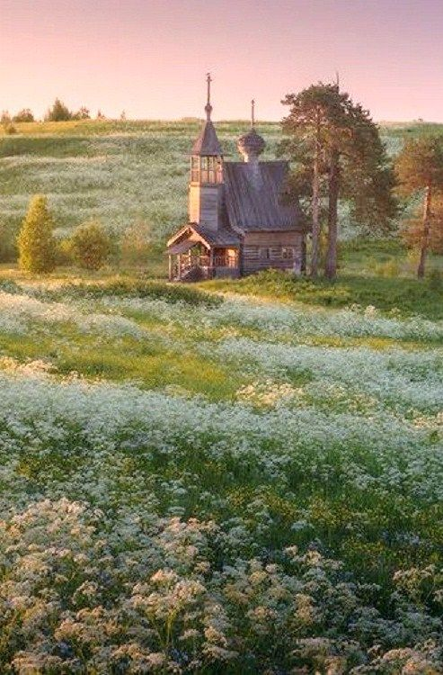 That awkward moment when you realize you've dreamt of this. Russian landscape: an old wooden church in the field of wild flowers.