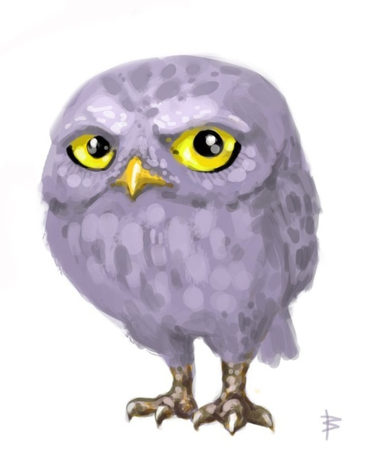 1651 Best Images About Owl Stuff On Pinterest Owl