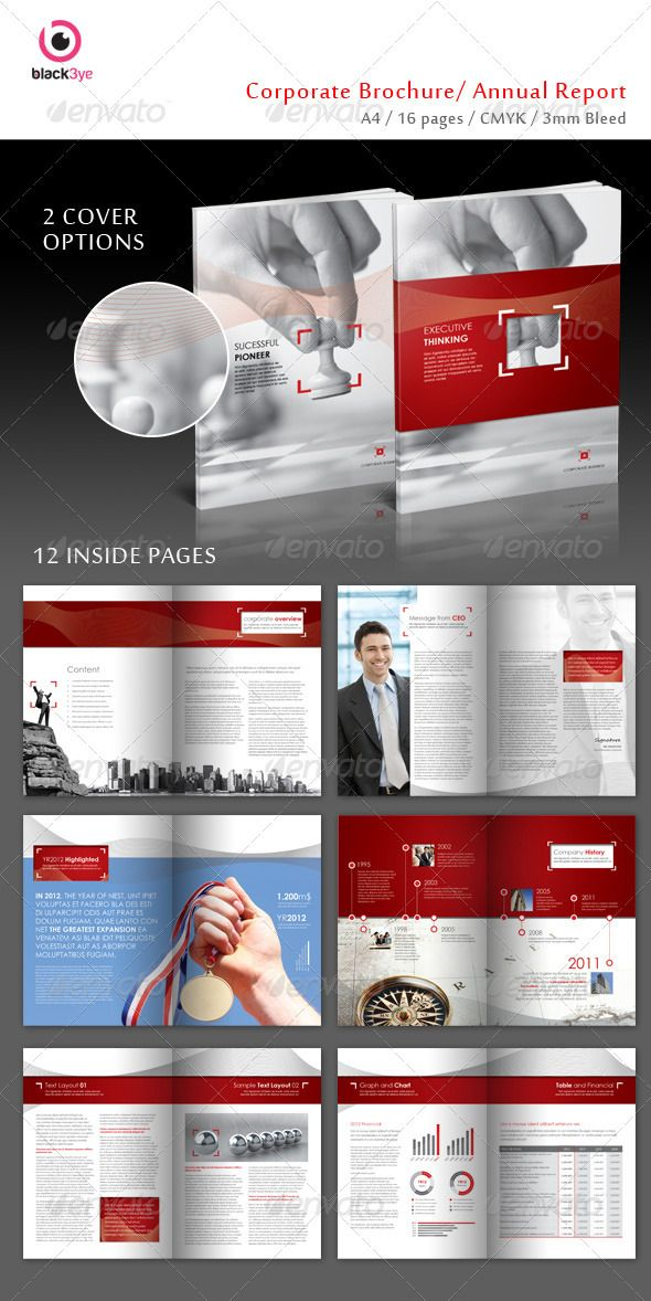 Executive Corporate Brochure / Annual Report