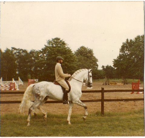 Menina's great grand father... Novilheiro, one of the all time great representatives of our breed. This amazing Lusitano was a world class champion show jumper, trained by J.P. Giacomini and ridden by John Whitaker. Here is a rare photo of J. P. on his beloved horse Novilheiro at Brinsop Court in 1977. JP bought Novilheiro as a young colt and trained him not only in Dressage, but in Eventing and Show Jumping - he was the top money winning show jumping horse in England during the eighties.