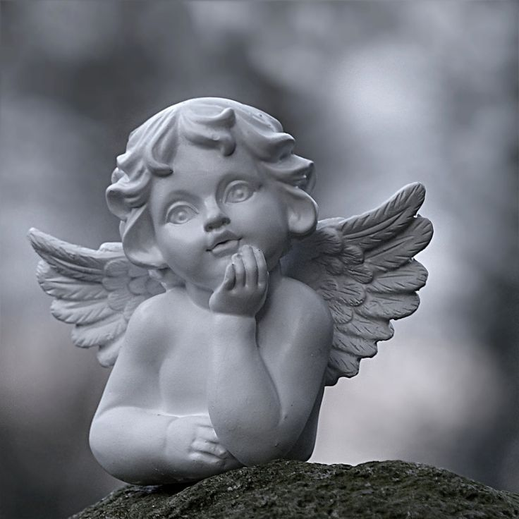 7 Best Stone Angel Images On Pinterest Angel Wings