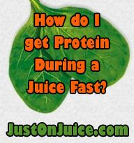 How do I get Protein During a Juice Fast? This is a question that I find being asked a lot lately. I always respond by saying you get protein from the many fruits and vegetables you're juicing. #Justonjuice #Juicing  (http://www.justonjuice.com/how-do-i-get-protein-during-a-juice-fast)