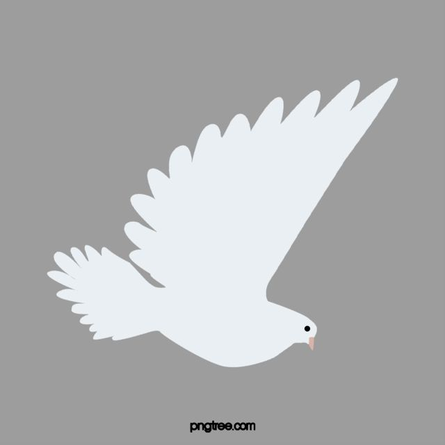 White Dove Wings Flying High White Dove Soar To Great Heights Png Transparent Clipart Image And Psd File For Free Download Dove Wing White Doves Simple Cartoon