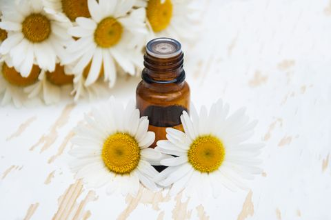 Roman chamomile oil can actually help a myriad of skin issues. If you happen to get a sunburn from too many hours out in the sun, or your baby is suffering from diaper rash, a little of this oil can be just what the skin needs. The powerful properties of chamomile are incredibly soothing and beneficial to the skin both when it's in a compromised state, and when it is relatively healthy.