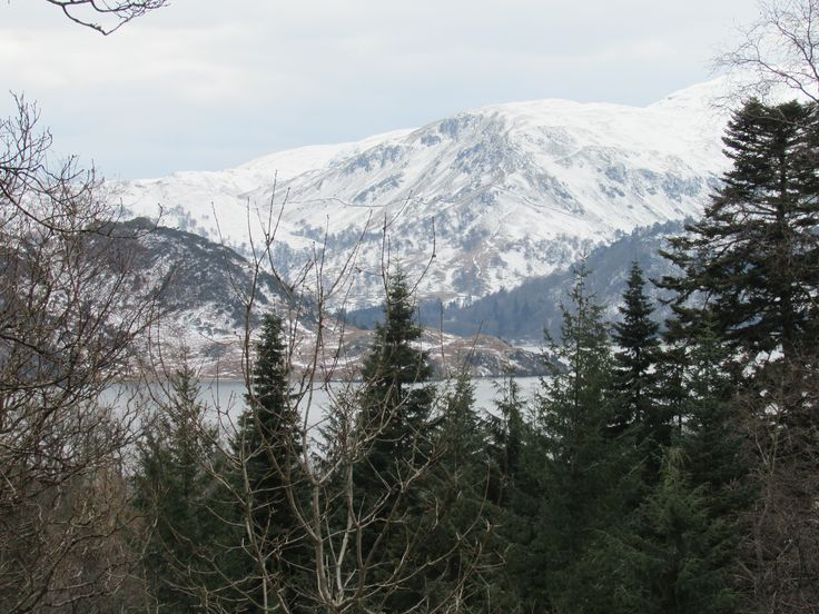 Scenic Wonder - This photo represents a bit of winter and spring because we have the snow on the mountains symbolising winter and the green leafs on the trees which symbolises new life!