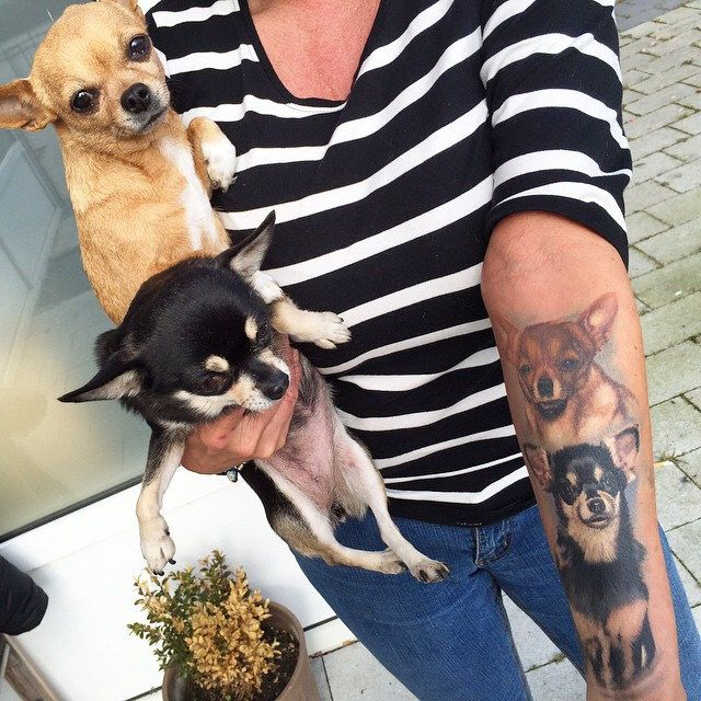 Tatt healed! Got the chance to get a pic with the dogs #Chihuahua #hautdesign…