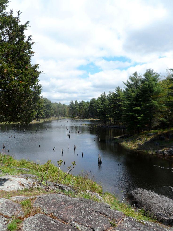 Pond along the Doe Lake Loop at Frontenac Provincial Park @Ontario Parks