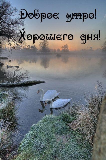 Картинки природы с надписями доброе утро, спокойной