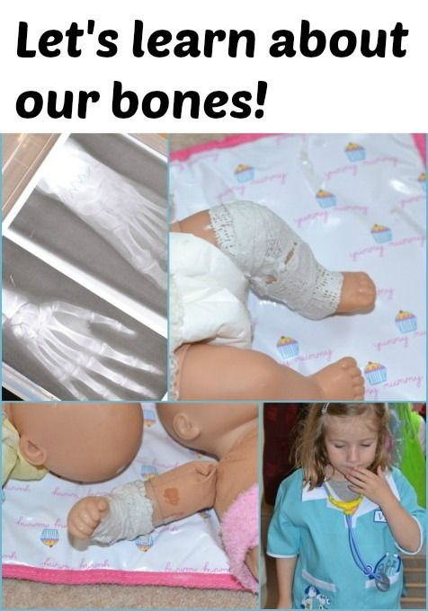 Activity ideas for learning about bones