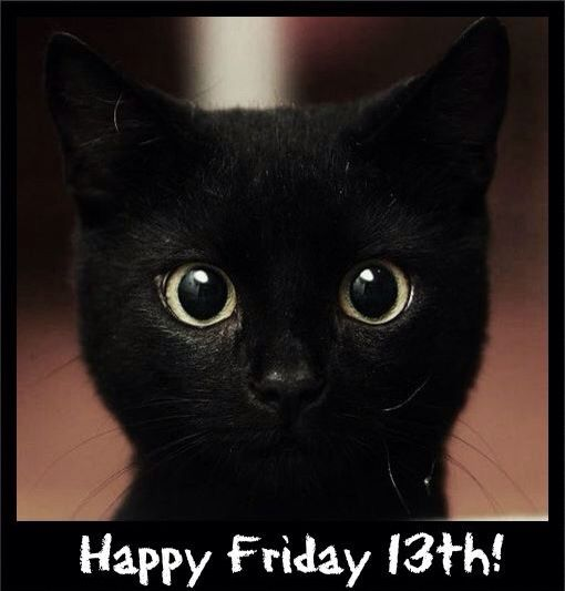 happy friday 13th cute little kitty cats pinterest