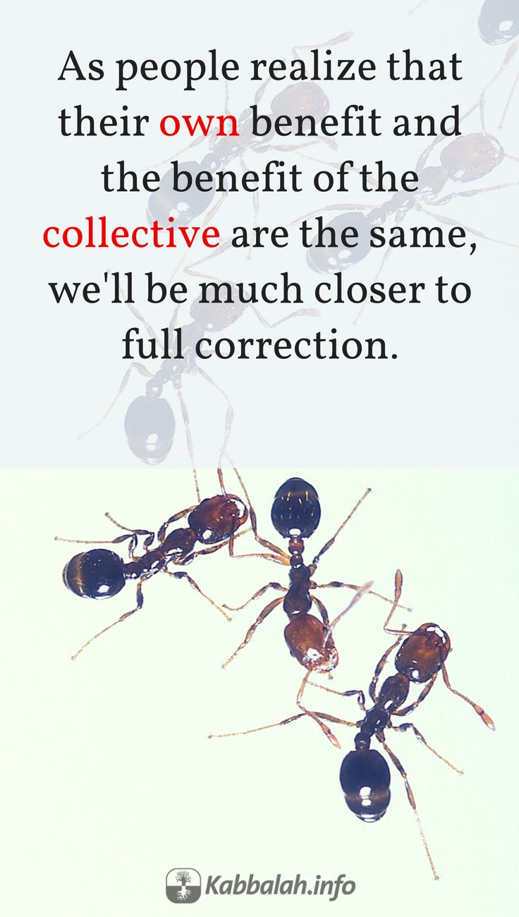 As people realize that their own benefit and the benefit of the collective are the same, then we'll be much closer to full correction #quoteskabbalahinfo | Get started with Live Kabbalah course => http://www.kabbalah.info/bb/kr/?utm_source=pinterest&utm_medium=link&utm_campaign=krgeneral |   #KabbalahRevealed #wednesdaywisdom #QuoteoftheDay #kabbalah  #quote